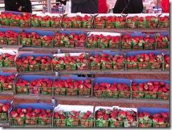Strawberry Festival (3)