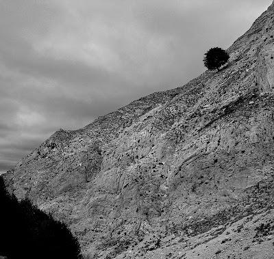 Vessants del barranc del Carrer Ample, Ports d'Horta,Parc Natural dels Ports, Horta, Terra Alta, Tarragona 2003.01.26
