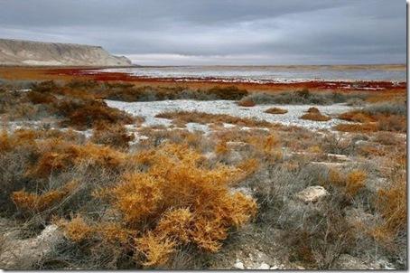 Aral_Sea2