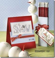 pencilcase_DEC_snowcard