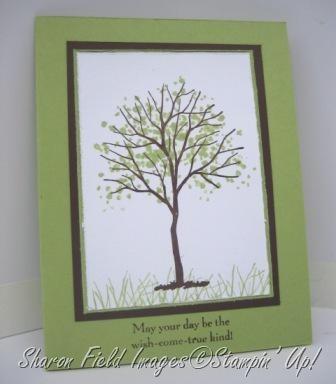tree1ctkcardsplnbkgrd