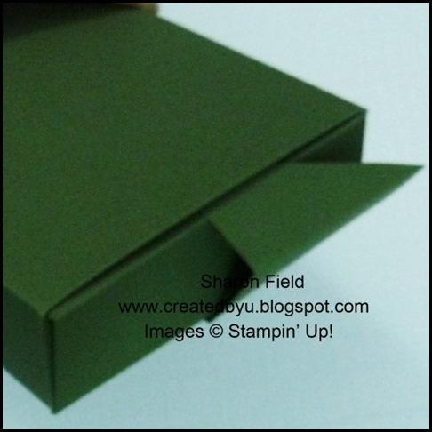 P1010546boxendclosure12cardslf311