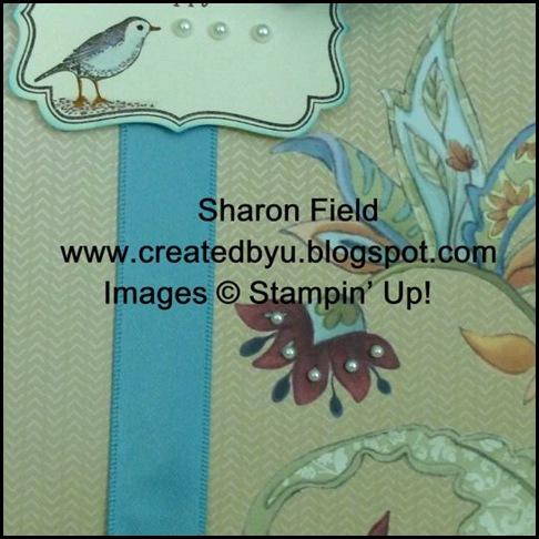 P1010574newpaperbirdupclose