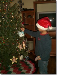 snow blizzard and tree decorating 014