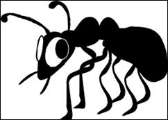 nervous-bug