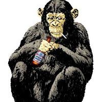 Macacos C (23).jpg