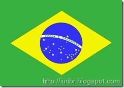 Os Estrangeirismos no Meio Corporativo - Bandeira do Brasil