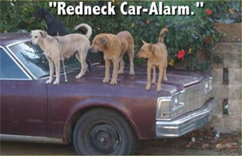 redneck_car_alarm