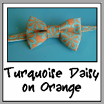 turquoise daisy on orange