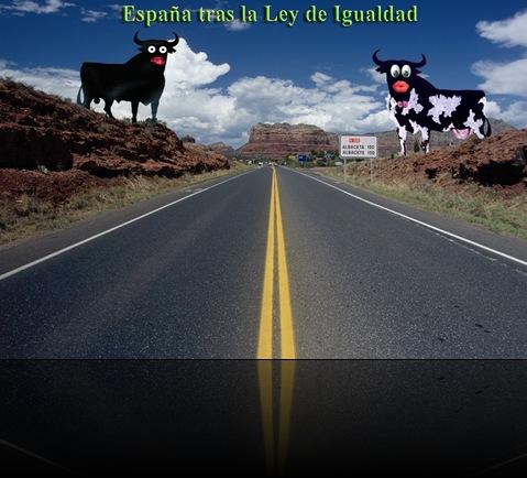 ley_de_igualdad_p
