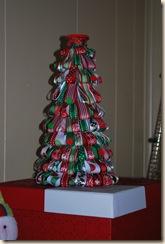 christmas 2010 013