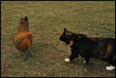 maggie meets katie 2