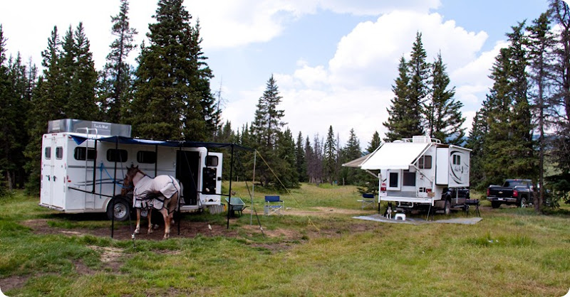 Camper and Horse Trailer c/w Meg, Blue and Rosie
