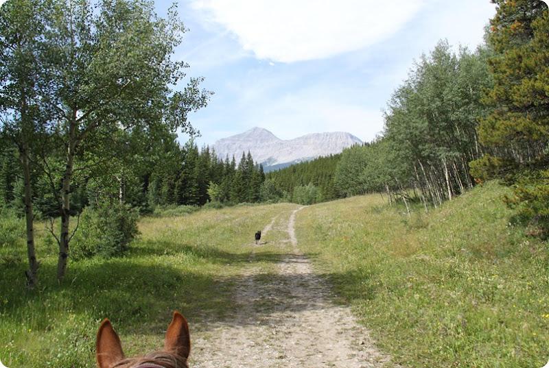 Etherington trail-1