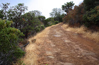 DiabloTrailHike_2010_10_23_002.JPG Photo