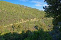 005_OhloneTrail_2011_04_03.jpg Photo