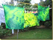 this is what a washing line is for!!