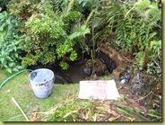 poorley pond