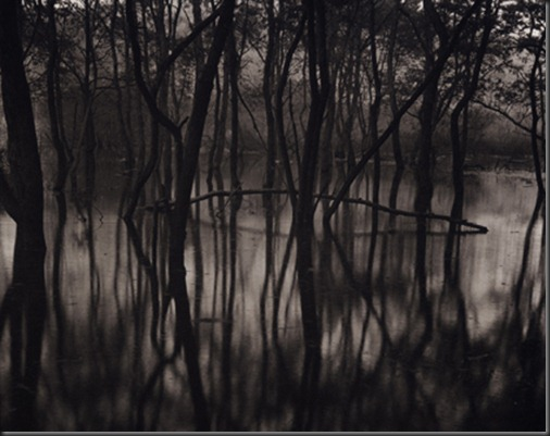 Takeshi_Shikama_Toyosawa_Lake1
