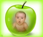 Jabĺčko ZGLy-10e.jpg