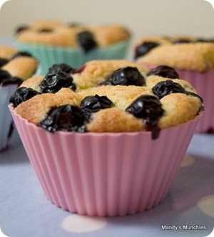 Blueberry and lemon friands 1