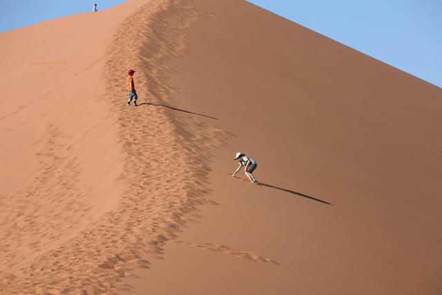 Namib 018
