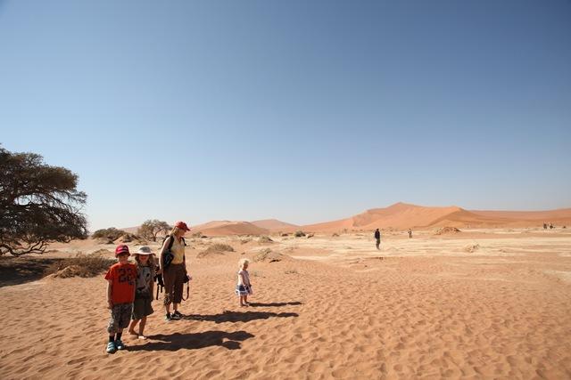 Namib 030