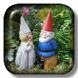 Wedding Gnomes