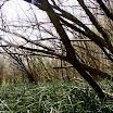 Mazowieckie Trawersy 2011 fotki Ani