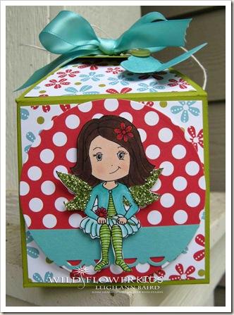Maya's Box front