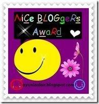 nice blogger awards