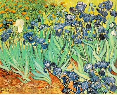 irises obra de vicent van gogh
