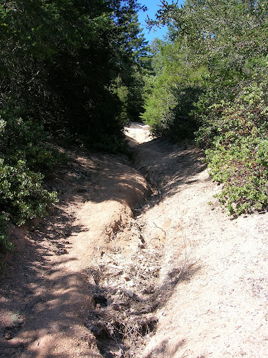 Steep and eroded with not a switchback in sight!