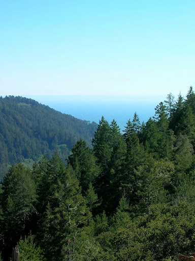 Ocean views from the Westridge trail