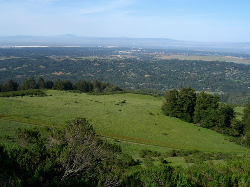 View to Palo Alto and the Bay