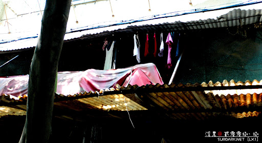天上的衣服 2008-8-30 10-31-8.jpg