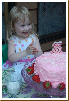 Sophia's Birthday2 039