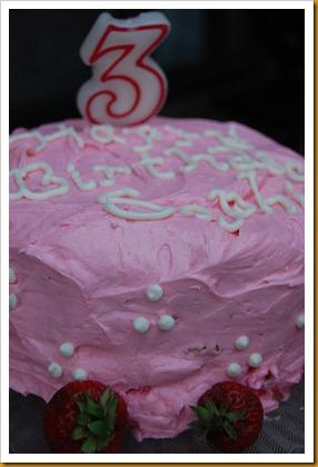 Sophia's Birthday2 049