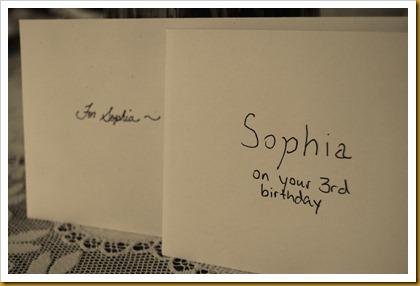 Sophia's Birthday 2010 101