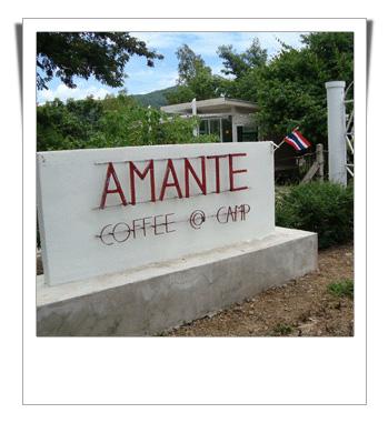 Amante coffee สวนผึ้ง