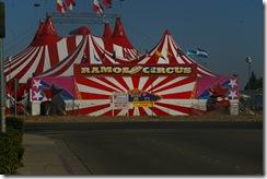 circus 010