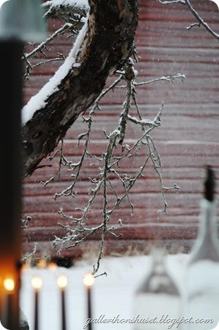 vinter hemma 2010 022