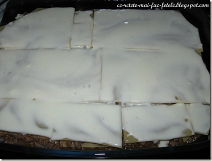 Lasagne alla bolognese - asezam la final un strat de sos bechamel
