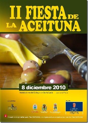 cartel aceituna 2010 2_343x480