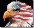 usa-eagle-800
