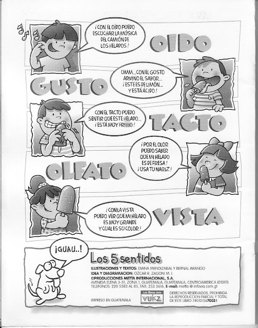 LOS CINCO SENTIDOS LAMINAS PARA PINTAR