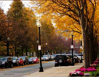 Boston_Streets
