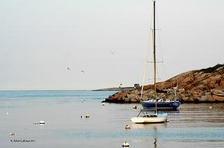 Sailing_Rockport