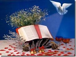 Biblia1(1024x768)