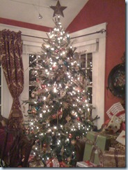 housechristmas 019